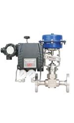 BFS Co., Ltd. Globe valve  13