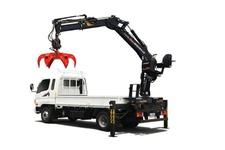 Donghae Knuckle Boom Crane