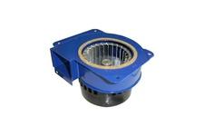 Roaster (Air Blower) Motor