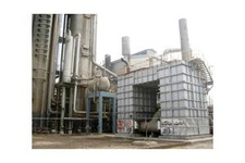 CDM Plant