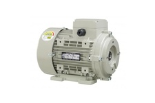 Hydraulic Induction Motor