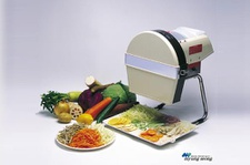 Small Electric Slicer