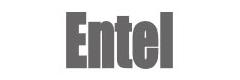 Entel Corporation
