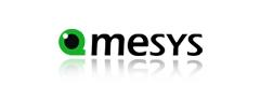 QMESYS Corporation