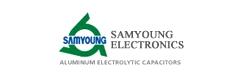SamYoung Electronics Corporation