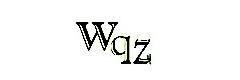 WQZ Co., Ltd. Corporation