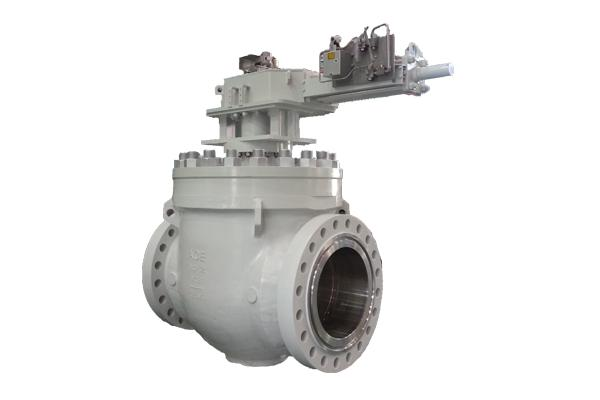 ACE VALVE's products