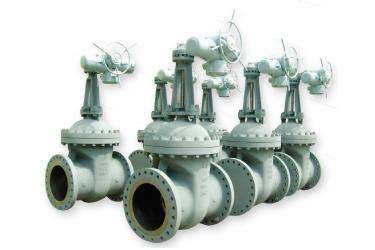 Shilla Valves's products