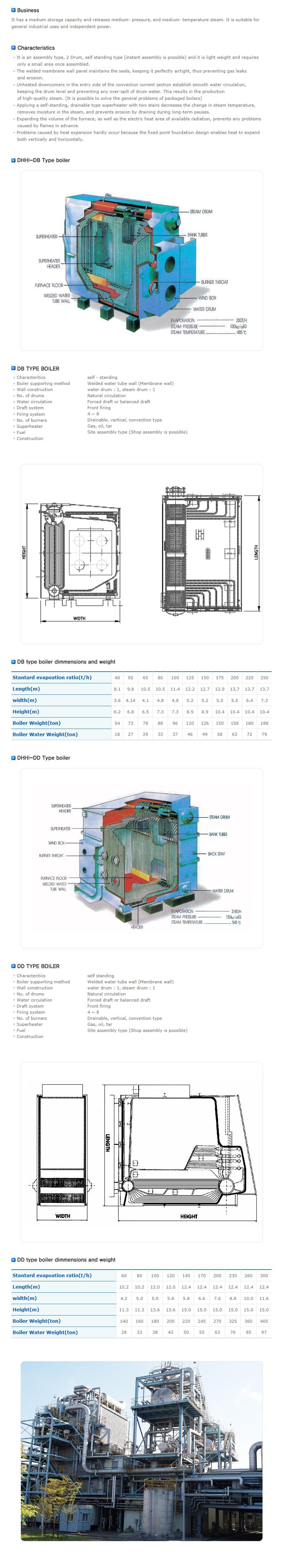 Dongbo DBHI Type Mass Storage Boiler