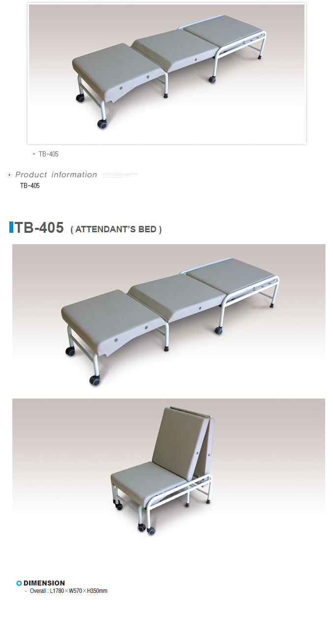 TAEDONG PRIME Attendant Bed