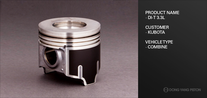 DONGYANG PISTON For Industrial  8