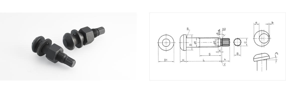 Daekwang Metal TS bolt (Torque Shear bolt)