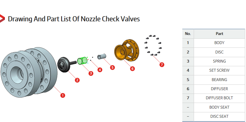 DKC Nozzle Check Valves  1