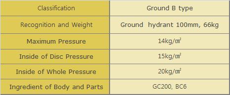 DooJin Outdoor hydrant Ground type B (100mm) DGHC-100