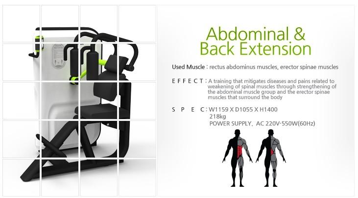 GEM, AIREXER Adbominal & Back Extension