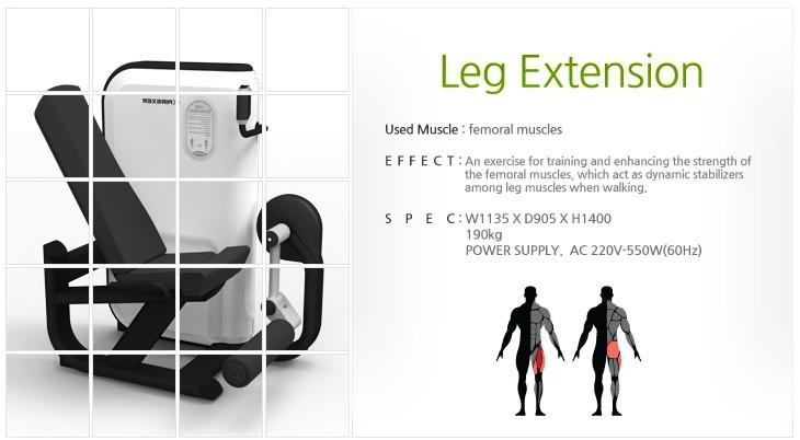 GEM, AIREXER Leg Extension