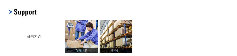 카스 매달림 저울 (휴대용) CHS 2