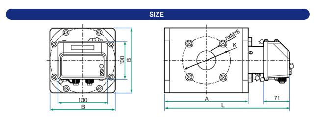 DMIT Rotary Gas Meter