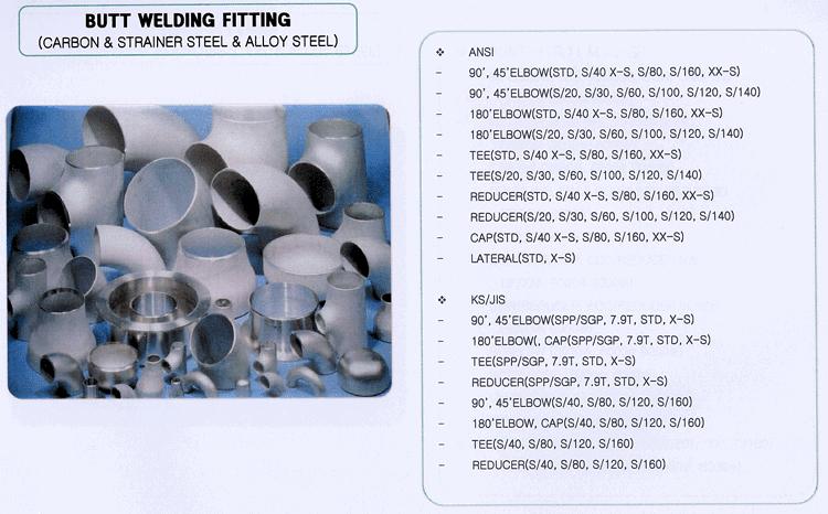 Seyoung Petro Filter Corporation Butt Welding Fitting