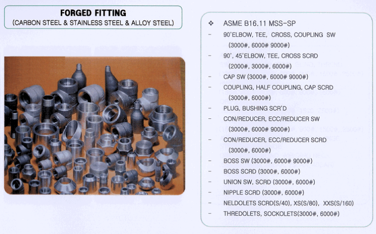 Seyoung Petro Filter Corporation Forged Fitting