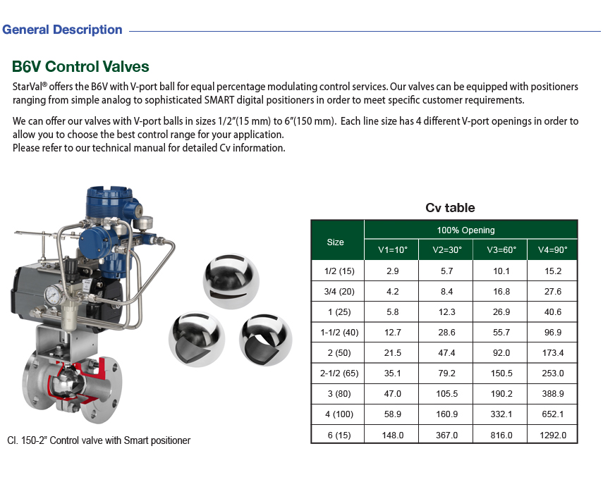 Young Poong Full Set of Control Valves