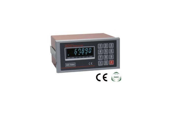 High Performance Digital Indicator BS-7300 details