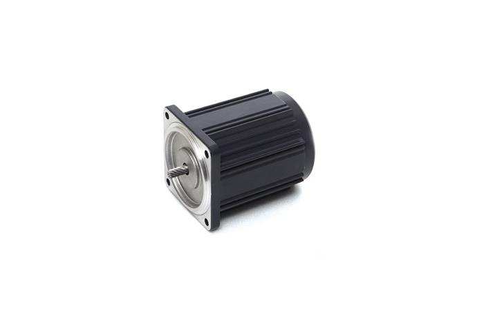 Induction Motor (6W, 1/124 HP)  details