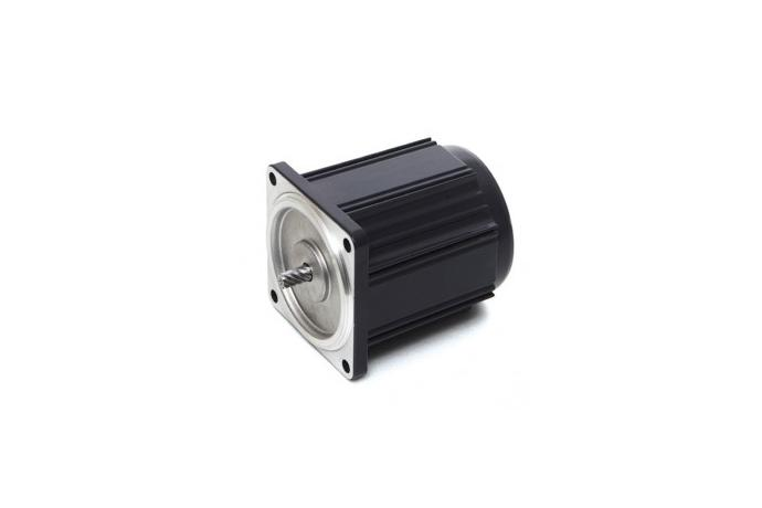 Induction Motor (15W, 1/50 HP)  details