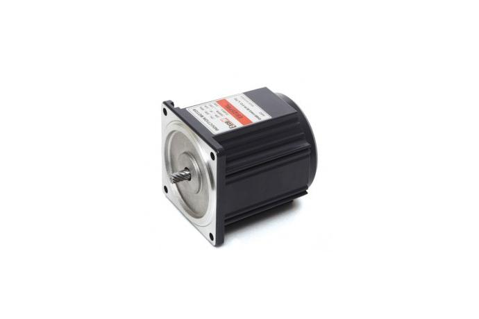 Induction Motor (25W, 1/30 HP)  details