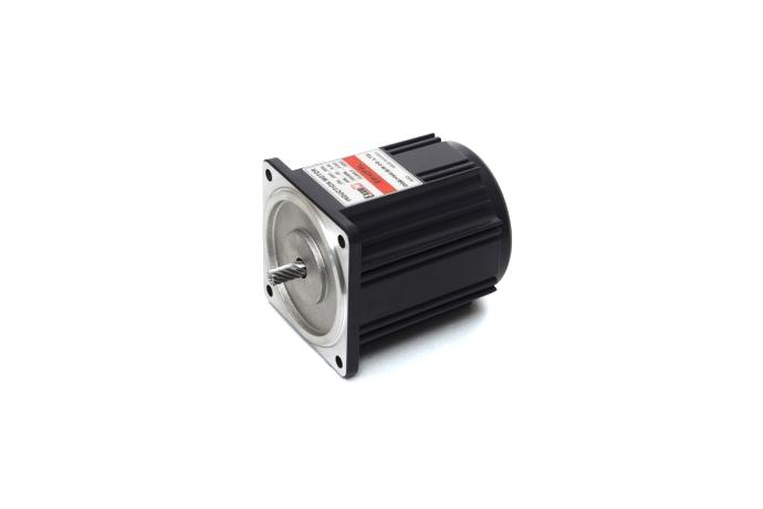 Induction Motor (40W, 1/18.5 HP)  details