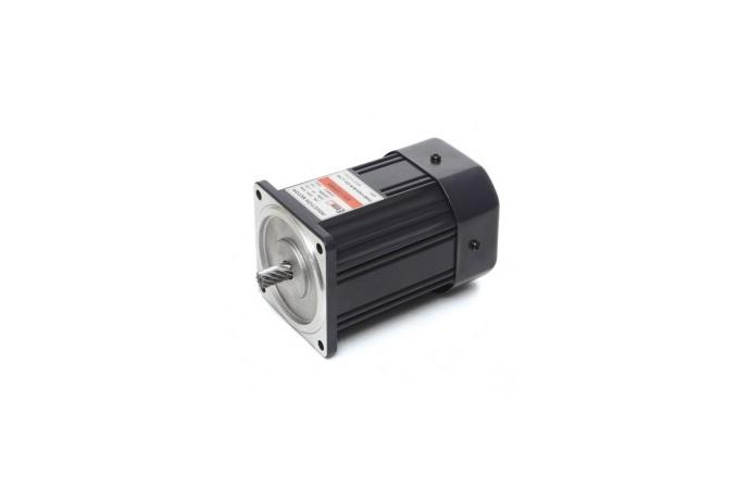 Induction Motor (90W, 1/8 HP)  details