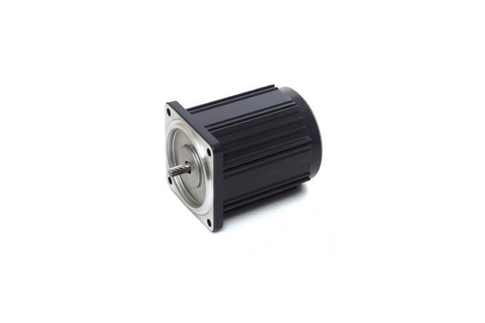 Reversible Motor (6W, 1/124 HP)  details