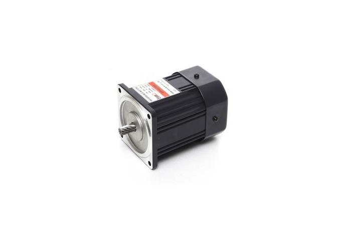 Reversible Motor (60W, 1/12.5 HP)  details