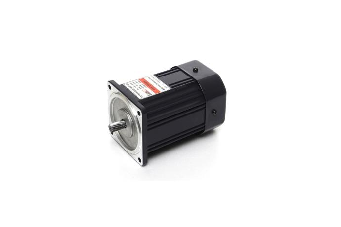 Reversible Motor (120W, 1/6 HP)  details