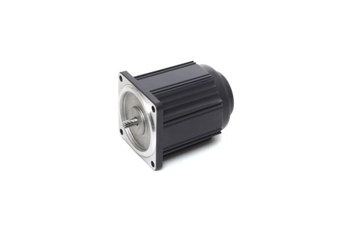 Speed Control Induction Motor (15W, 1/50 HP)  details