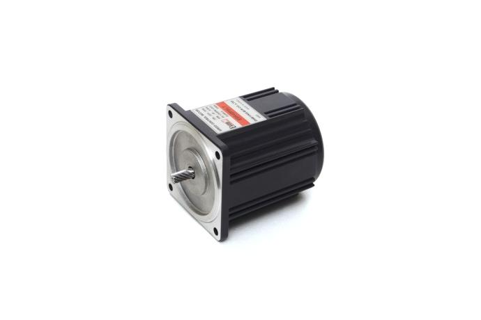 Speed Control Induction Motor (40W, 1/18.5 HP)  details