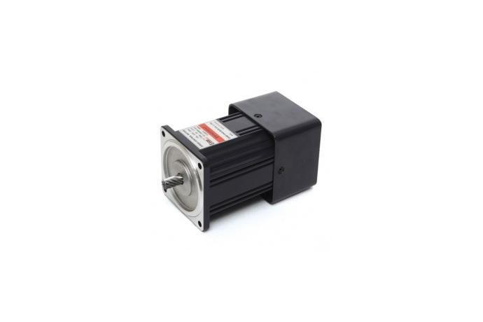 Speed Control Induction Motor (60W, 1/12.5 HP)  details