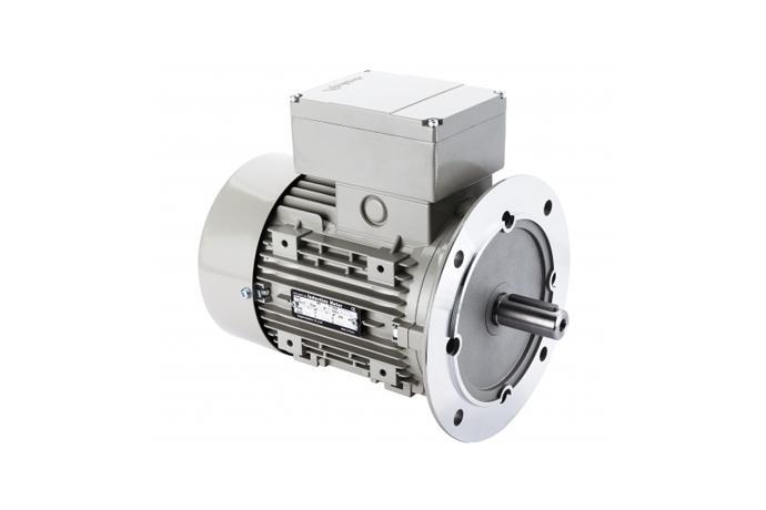 Jungwoo Motor Ltd  - B5 Vertical Type 3-phase Motor, Single phase